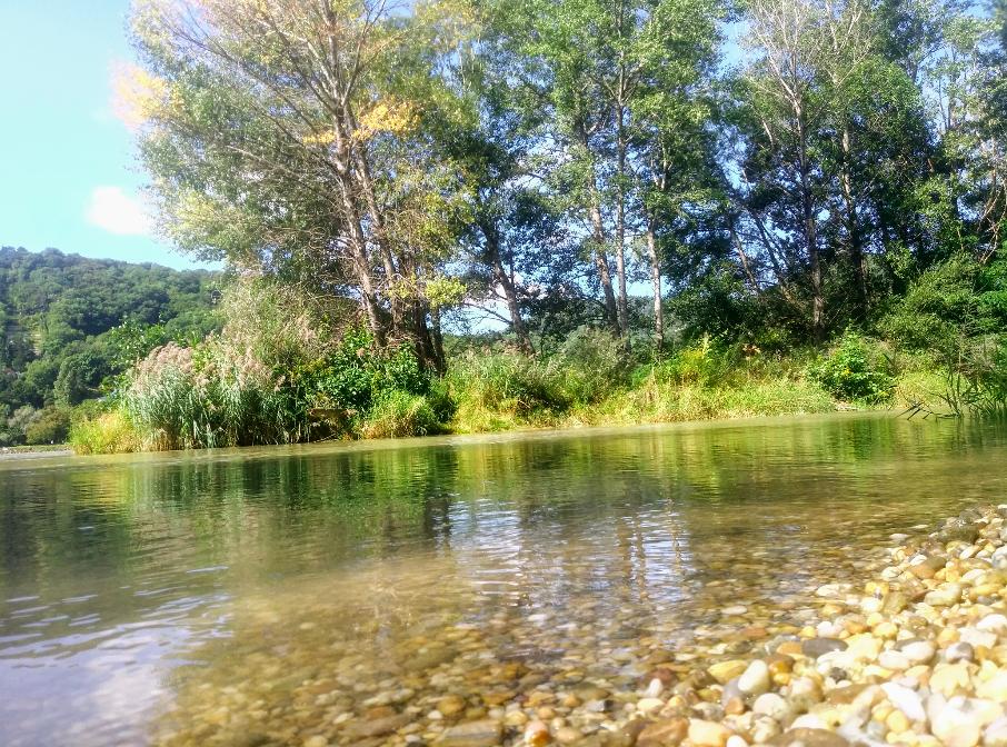 Fast schon kitschig schön wird es bei den kleinen Buchten am nördlichen Ende der Donauinsel.