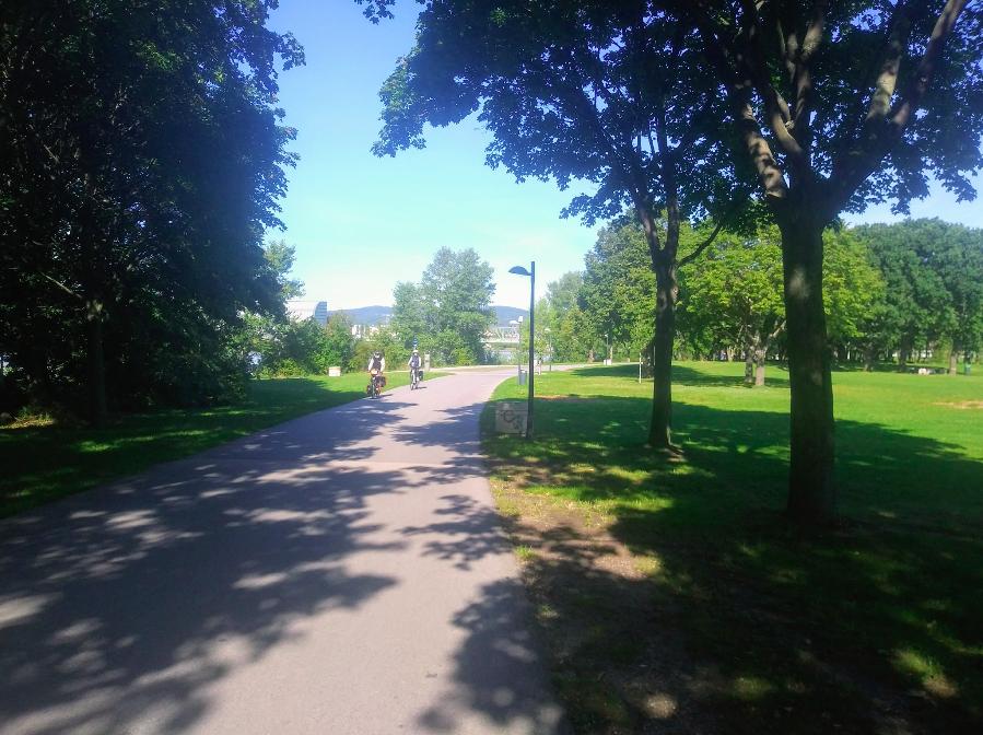 Die Insel lädt mit ihren zahlreichen asphaltierten Straßen zum Radeln ein – egal ob gemütliche Radentdeckungsreise oder zügige Rennradfahrt: Für Bewegung auf zwei Rändern ist die Insel ideal.