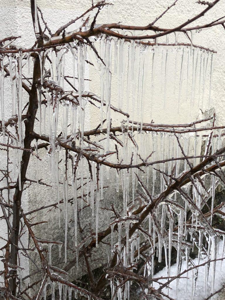 Wienerwald im Winter, Photocredits: Energieleben Redaktion