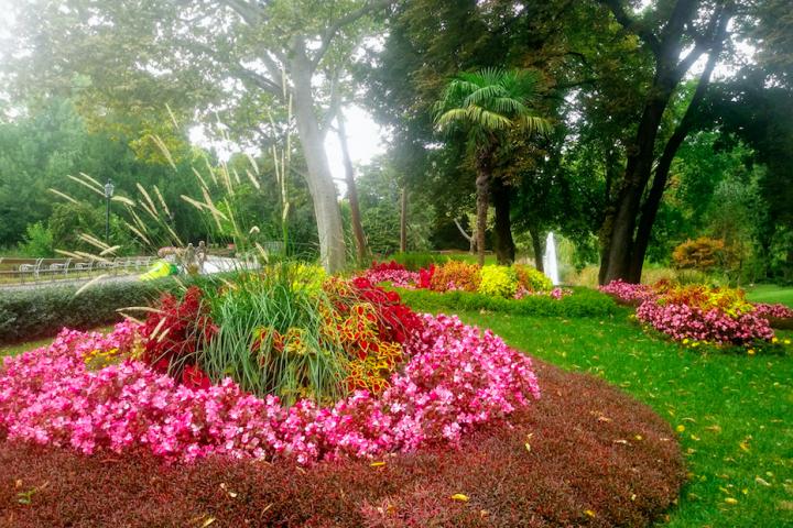Gepflegte Blumenanlagen finden sich im Türkenschanzpark genauso wie ganz naturbelassen wirkende Freiflächen.
