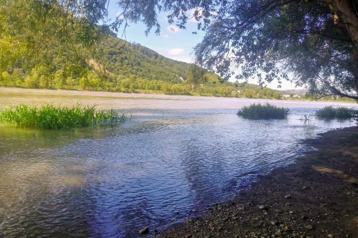 Ruhige Buchten, klares Wasser – willkommen im Naturparadies Donauinsel.