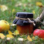 3. Der Herbst ist Erntezeit - und somit die beste Jahreszeit zum Marmeladen einkochen! - Fotocredit: Pixabay/congerdesign