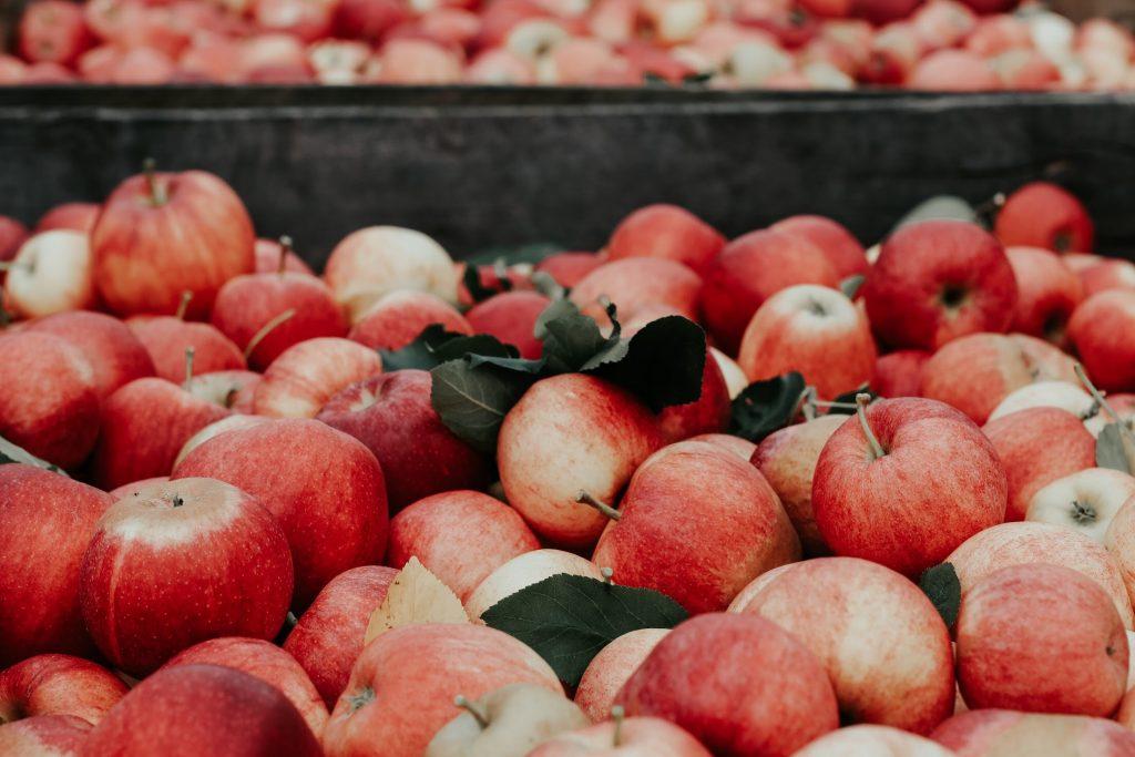 Apfel gibt es meist das ganze Jahr, da man diese sehr gut lagern kann. Fotocredit: Unsplash.com/ Joanna Nix