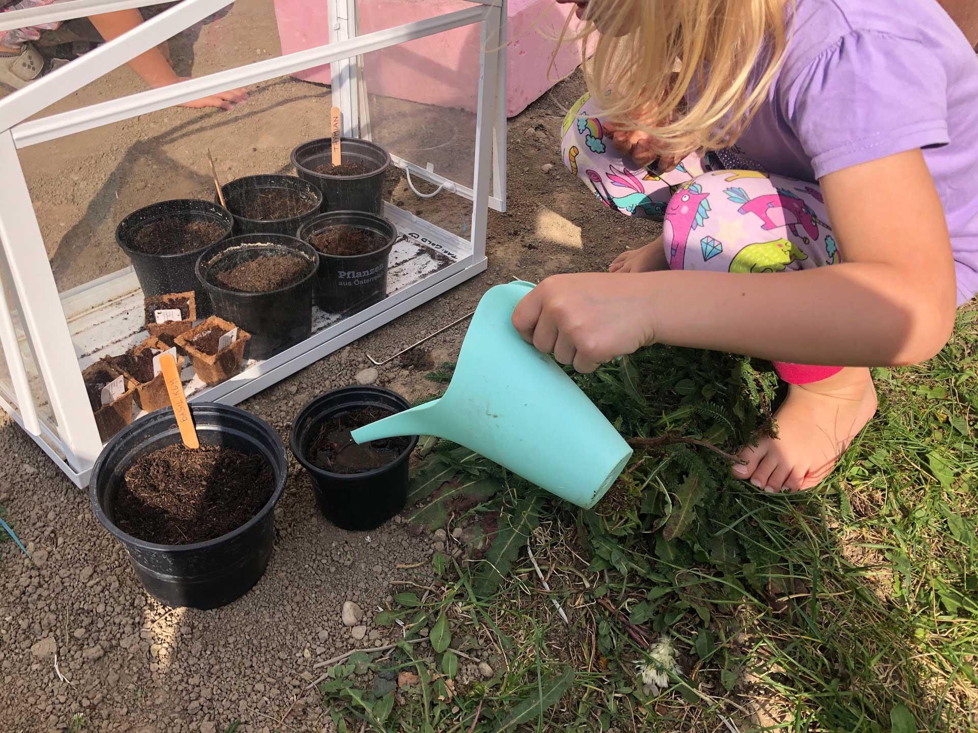 Pflanzen ziehen mit Kindern