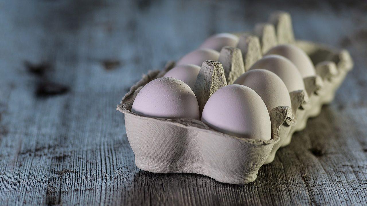 4. Eier eignen sich für eine Reihe von Experimenten. - Fotocredit: Pixabay/ monicore