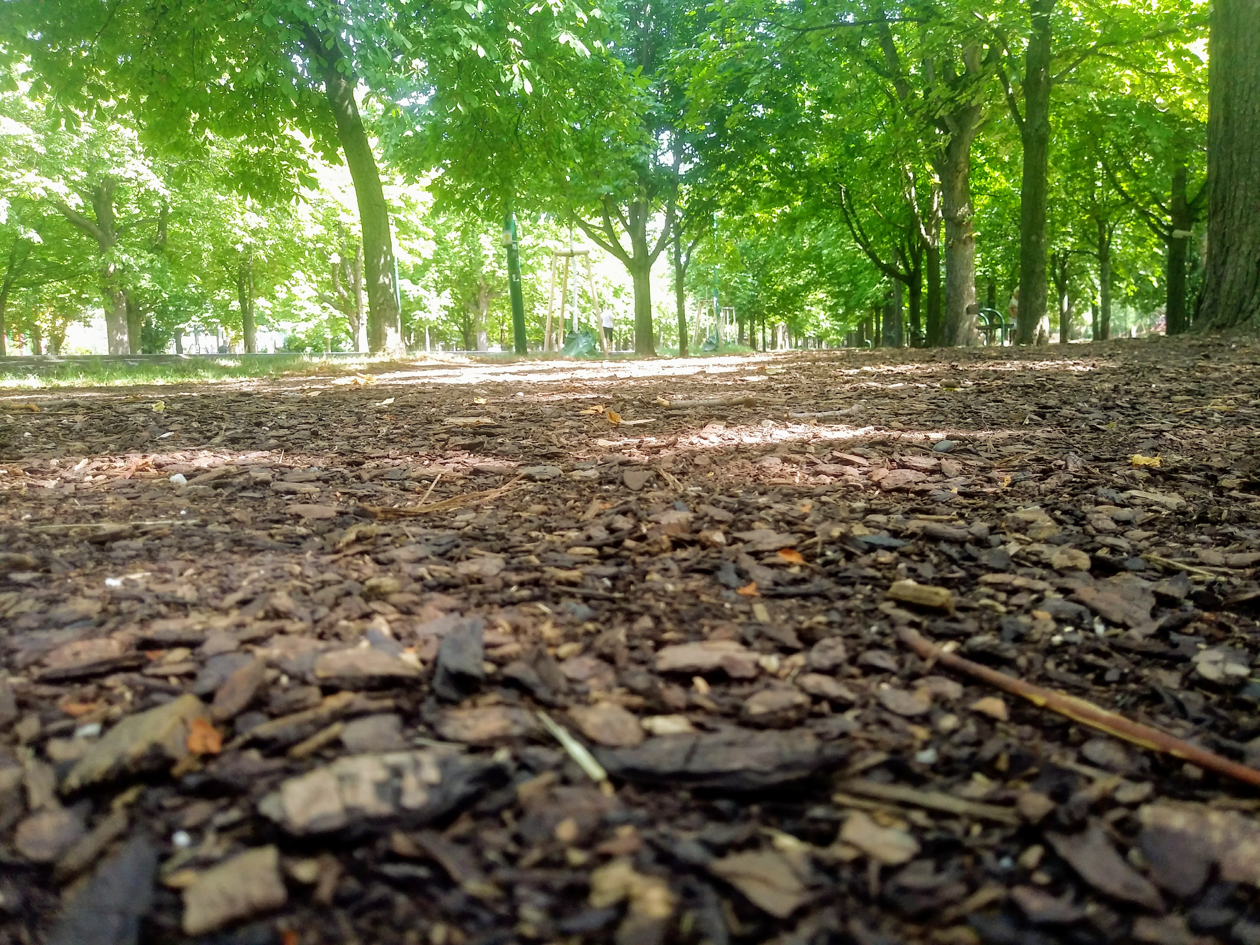 Beliebtes Laufziel – der grüne Prater. Foto: Energieleben Redaktion