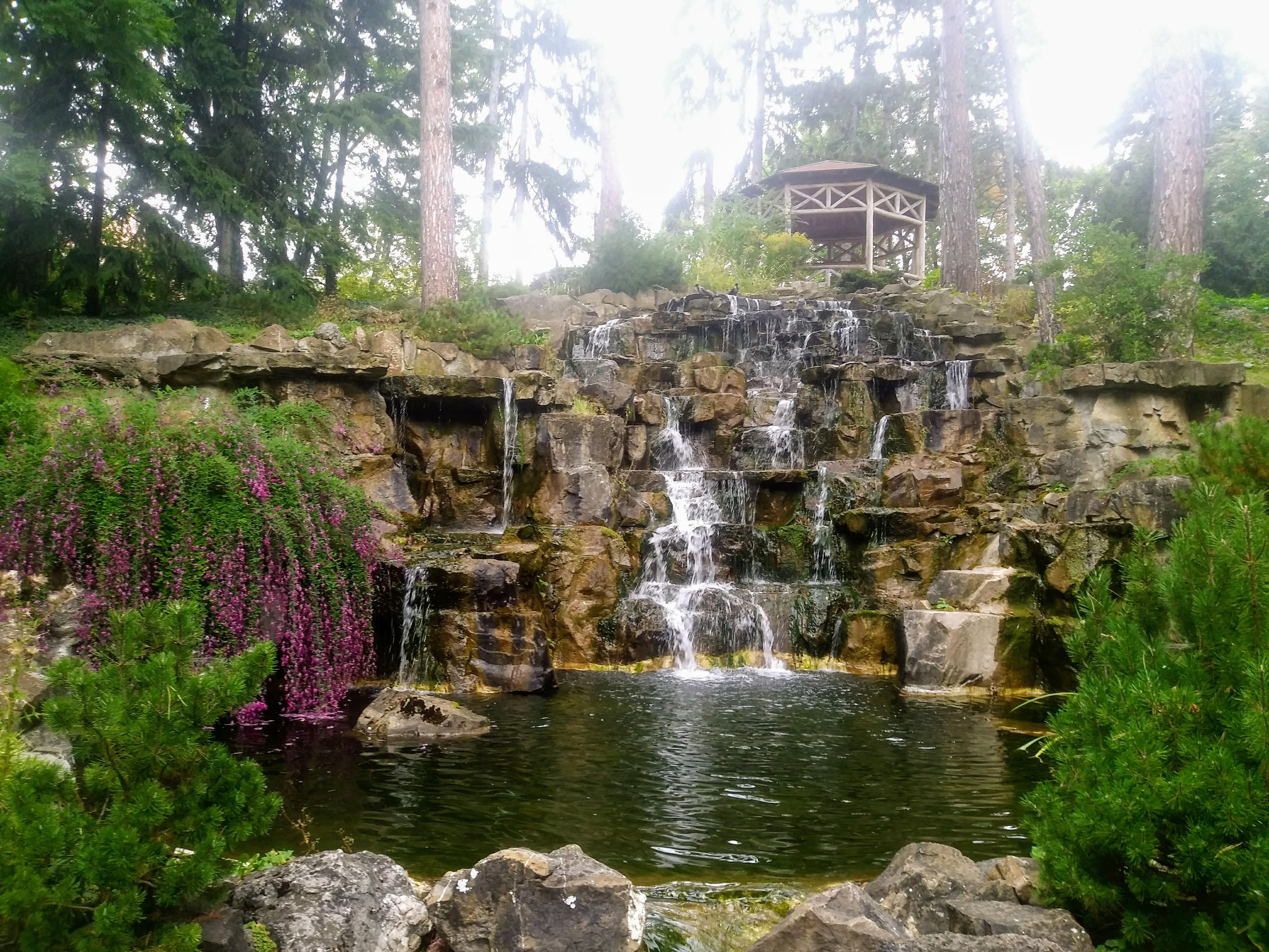 Die Wiener Parkanlagen gehören zu besonders schönen Erholungsvarianten der Städter. Foto: Energieleben Redaktion