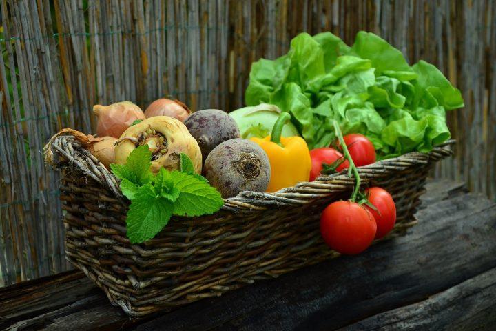 Das solltest du beachten, wenn du Gemüse im eigenen Garten anbauen willst. Fotocredit: © congerdesign/Pixabay