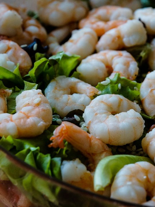 Shrimpscocktail bald aus dem Labor? Shiok Meats macht's möglich. Fotocredit: © Taken / Pixabay