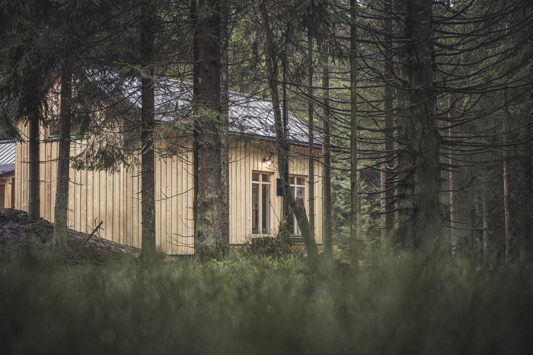 Eingebettet in die Natur bieten die besonders eingerichteten Holzhütten ein Walderlebnis besonderer Art. Fotocredit: © Jan Hanser