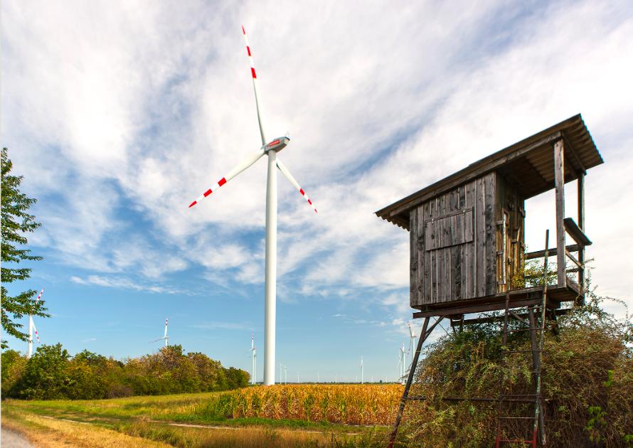 Der Windpark in Glinzendorf im Marchfeld wurde bereits zweimal erweitert. Fotocredit: © Christian Houdek/ Wiener Stadtwerke