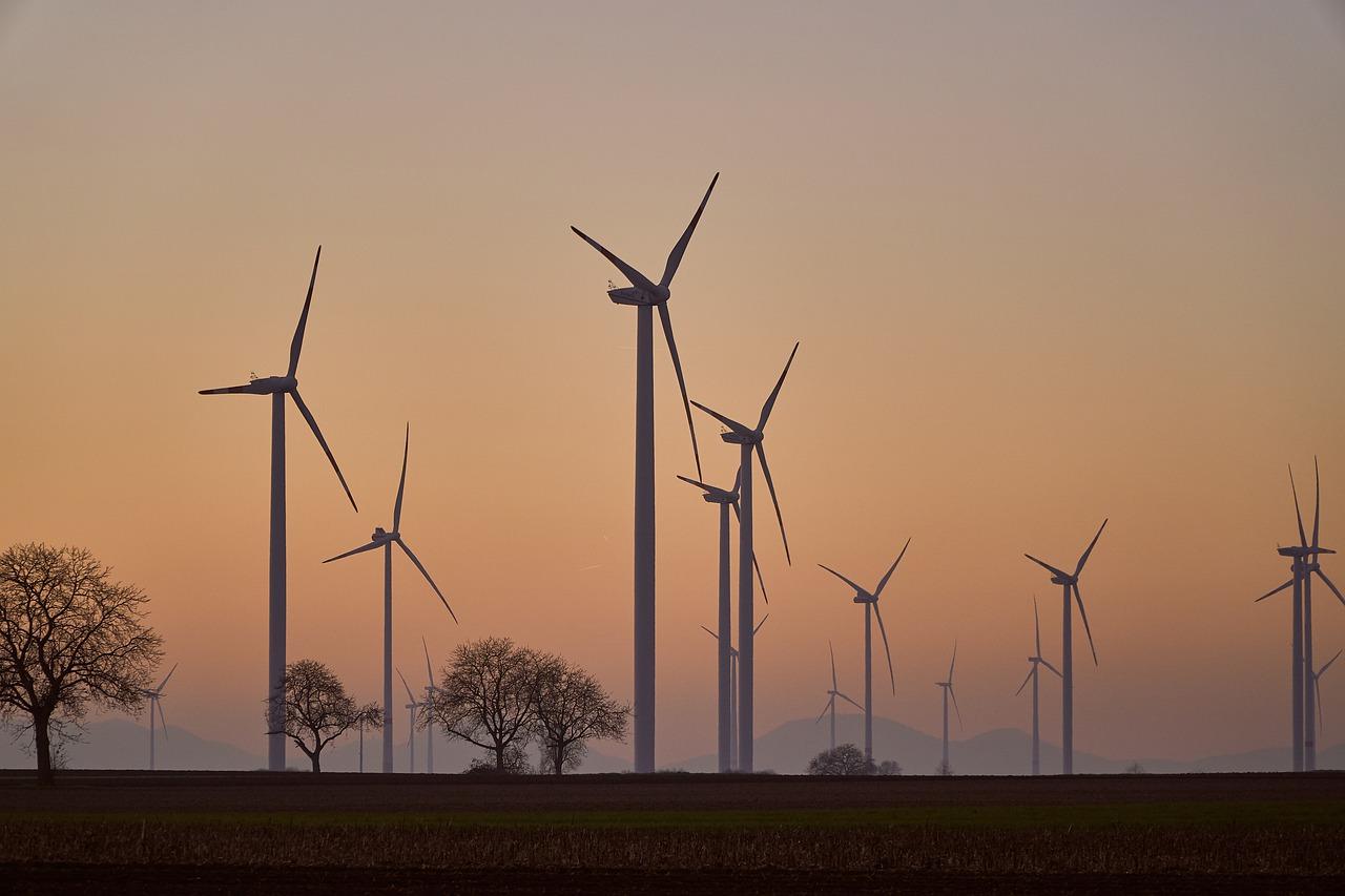 In den 70ern kam Bewegung in die Sache: Von solch modernen Windparks war man Ende des Jahrzehnts aber noch weit entfernt. Fotocredit: © Markus Distelrath/Pixabay