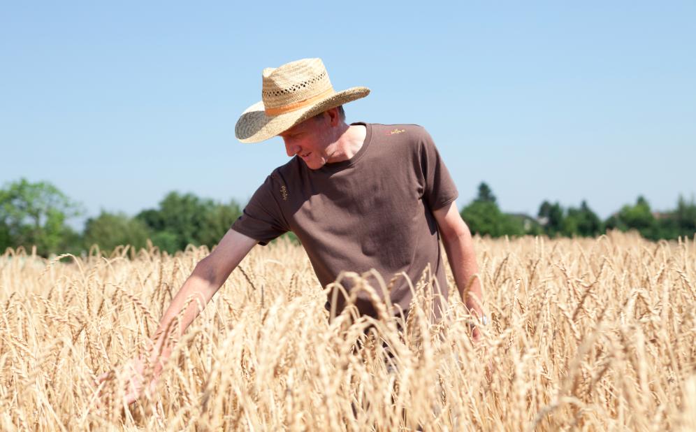 Für viele Bäuerinnen und Bauern auf Bio-Höfen ist Bio längst zu einer Lebenseinstellung geworden. Foto: © BIO AUSTRIA/Theurl