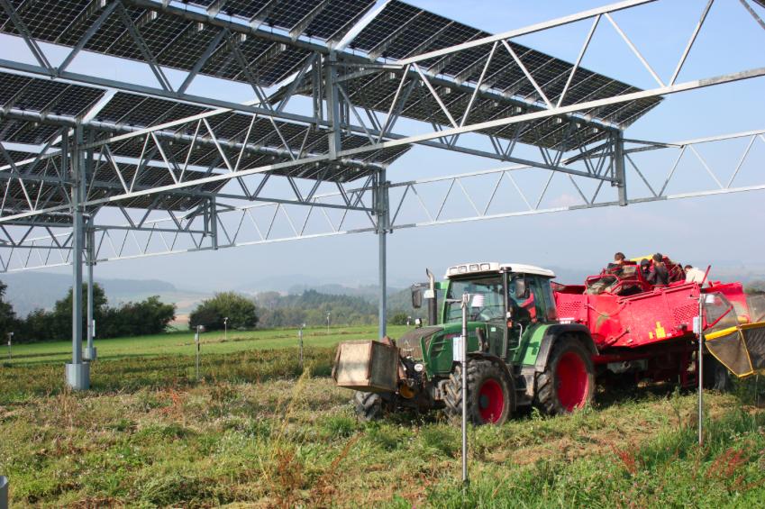 Nicht nur Landwirtschaftsmaschinen – hier beim Roden der Erdäpfel – können unter der Anlage bedient werden, auch für Licht und Regen ist Platz. Fotos: © Hofgemeinschaft Heggelbach