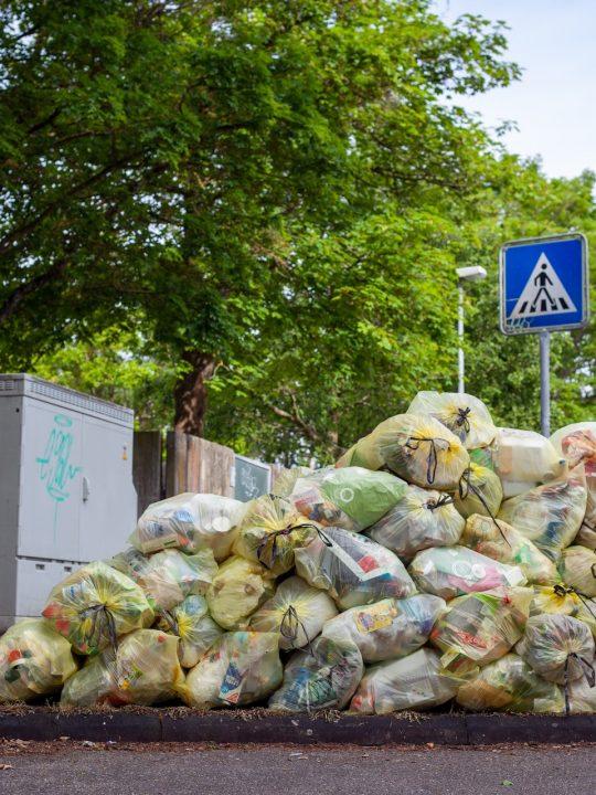 Abfallvermeidung und die Zero Waste Bewegung Fotocredit: Jasmin Sessler on Unsplash