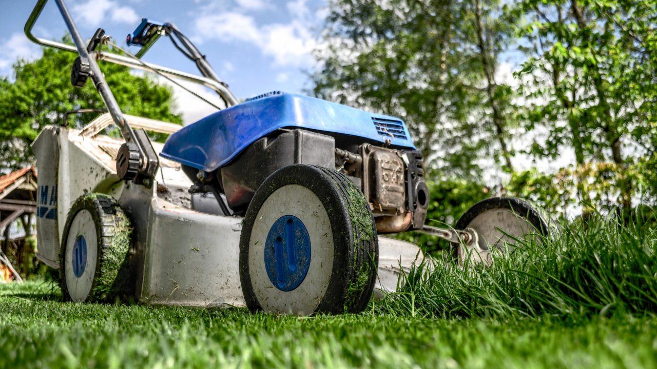 Die Ernte des Rasenmähers gehört natürlich auf den Komposthaufen. Aber nicht zu viel auf einmal und auf die Durchmischung mit trockenen Material nicht vergessen. Bild: Pexels
