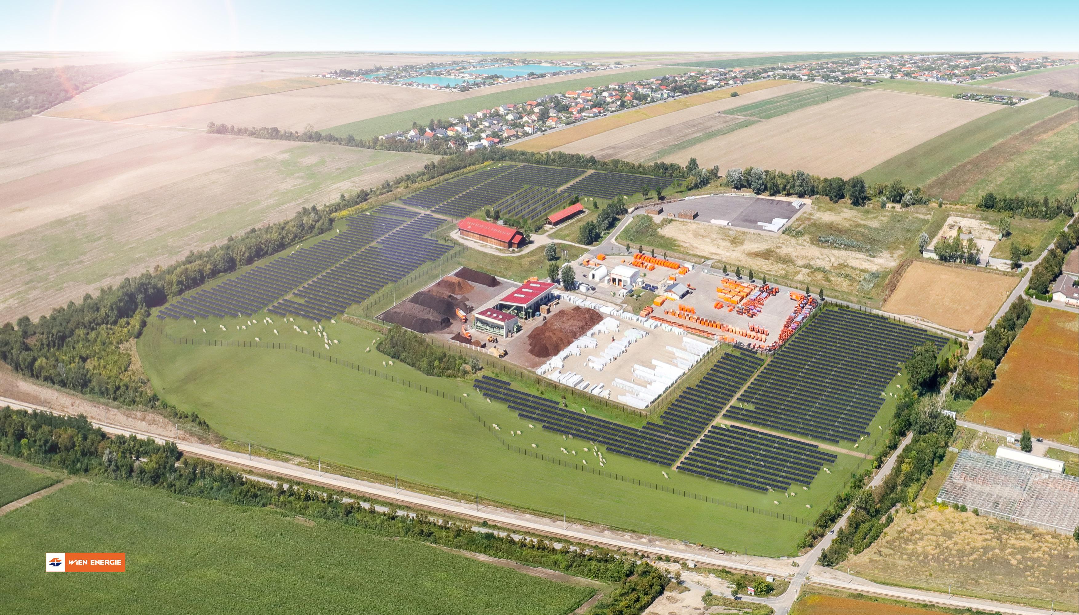 So sieht der Plan auf den Schafflerhofgründen in Wien-Donaustadt aus: Photovoltaik, Weidefläche und Ackerbau. © Wien Energie/Christian Fürthner (Foto)/Corsaro Graphic Design (Montage)
