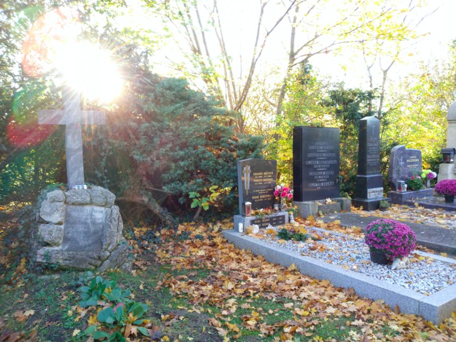 Es ist wirklich ein besonderes Gefühl, gegen Ende des Jahres, wenn die Sonne schon tief steht, zwischen den Tausenden Gräbern zu spazieren.