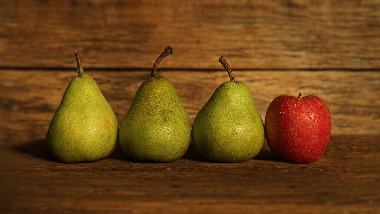 Mit Äpfeln und Birnen aus heimischem Anbau können wir unsere Lust auf Obst und etwas Gesundes, Süßes auch im Winter stillen. Fotocredit: © Tracy Lundgren/Pixabay
