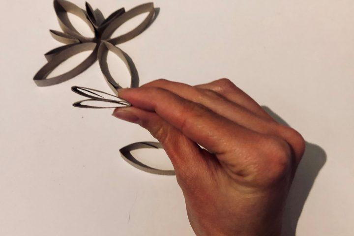 Legt die Kartonringe so hin, wie eure Weihnachtssterne am Ende aussehen sollen. Ihr könnt die Ringe auch ein bisschen zusammen drücken, dann bekommen sie eine andere Form. -Fotocredits: Lisa Radda