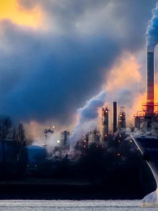 Durch den Lockdown ist die Erde leider nicht gerettet – aber die Pandemie könnte neues Bewusstsein schaffen. Foto: © Chris LeBoutillier/Pixabay