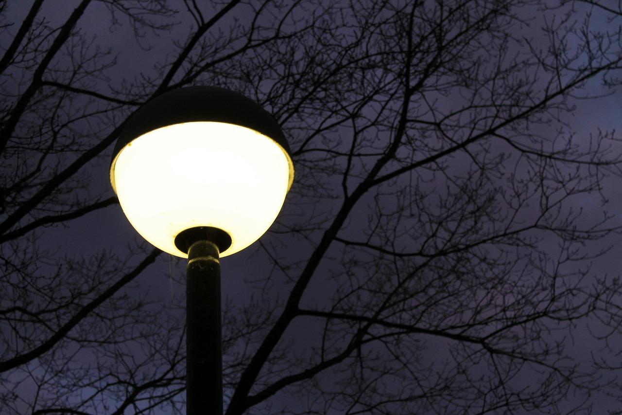 Auch bei Nacht immer hell? Das ist ein ernstzunehmendes Problem für die inneren Taktgeber der heimischen Tierwelt. Fotocredit: © kalhh auf Pixabay