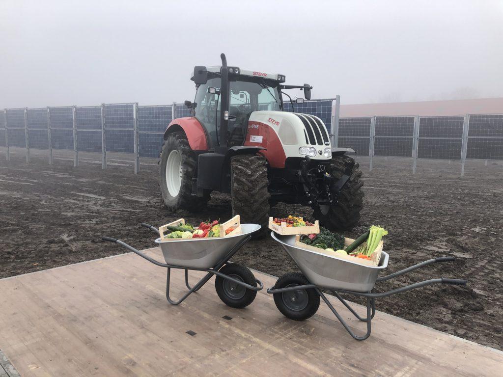 Die vertikalen Module sind Teil der Agrar-Photovoltaikanlage, wo auch Gemüse angebaut werden wird. Fotocredit: Energieleben Redaktion