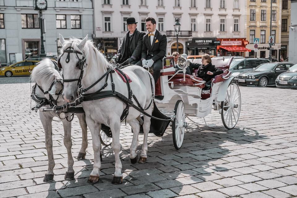 Was die Pferde brauchen, wissen die Riding Dinner-Gründer seit ihrer eigenen Kutscher-Ausbildung noch genauer. Fotocredit: © wien.ridingdinner.com