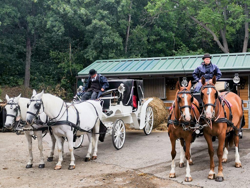 Das Fiakertraditionsgesetz bestimmt die Optik der Kutschen und auch den Dress-Code der Fahrerinnen und Fahrer. Fotocredit: Energieleben Redaktion