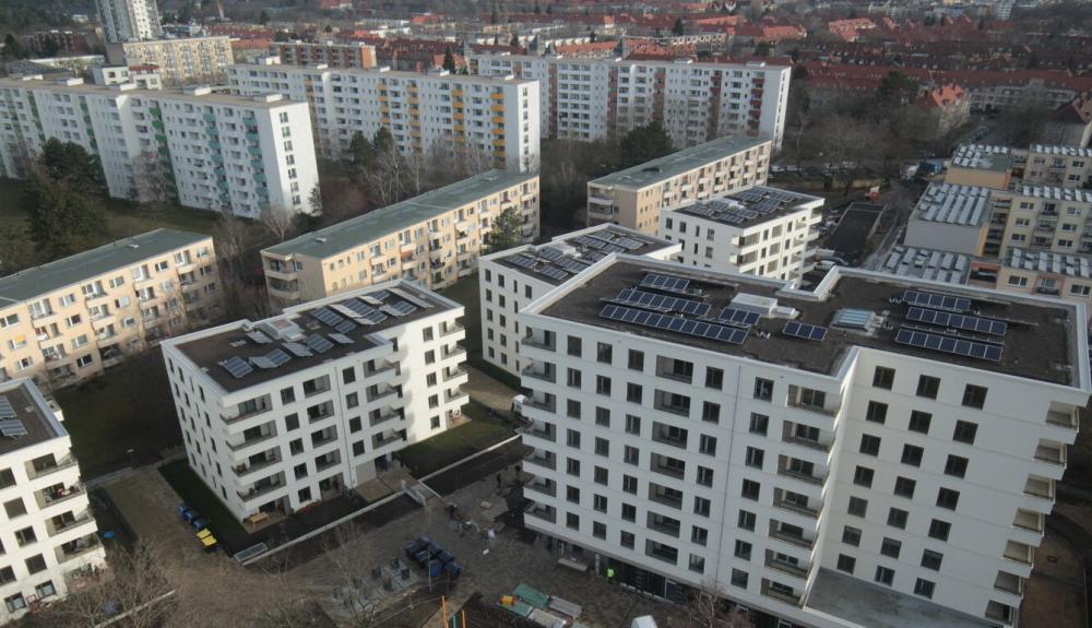 Noch braucht das Grün am Spandauer Solardach ein bisschen Zeit, um sich als solches zu entwickeln – der Frühling wird sein Übriges dazu tun. Fotocredit: © Charlottenburger Baugenossenschaft eG