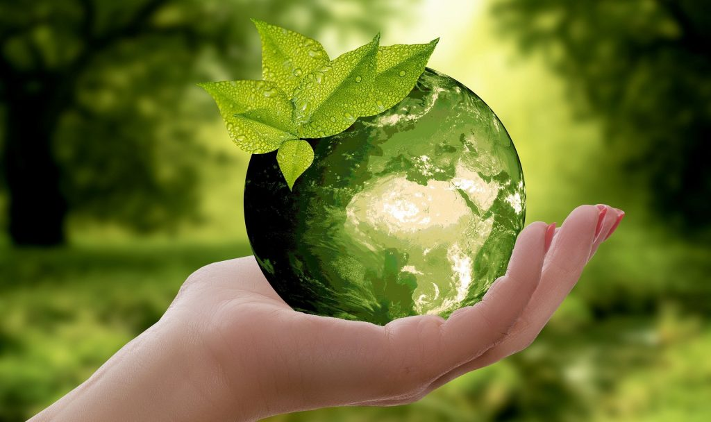 In unserem Nachhaltigkeits-ABC zeigen wir euch 26 Ideen für ein ressourcenbewussteres Leben. Fotocredit: © anncapictures/Pixabay