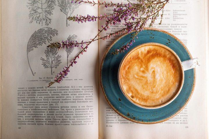 Foto: Pixabay/Daria-Yakovleva