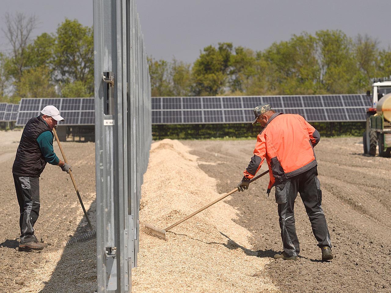 Fotocredit: Wien Energie/Johannes Zinner
