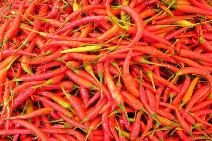 Capsaicin ist der Stoff, der dafür sorgt, dass wir Chilis als scharf empfinden – und dass Solarzellen in Zukunft effizienter sein könnten. Fotocredit: © Simon/Pixabay