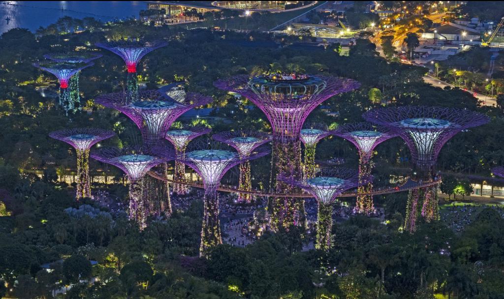 Vorreiter in Sachen grüner Architektur: Singapur beeindruckt mit üppig grünen Panoramen. Fotocredit: © schliff/Pixabay
