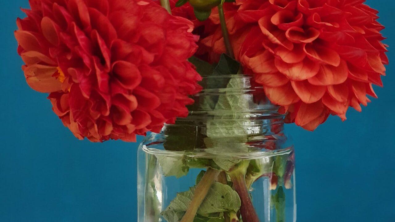 Schraubglas als Blumenvase
