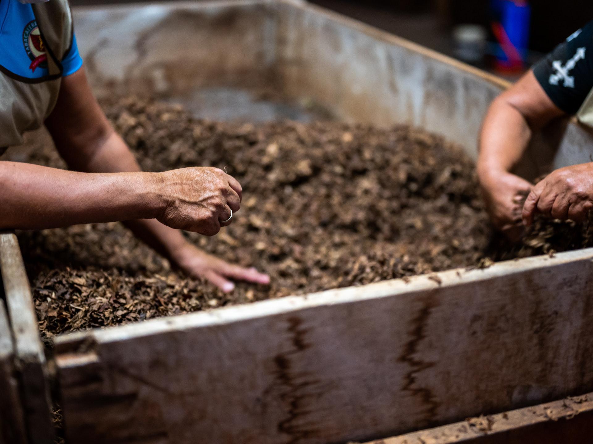 Es gibt viele Möglichkeiten, auch Baumschnitt zu verkompostieren. - Photocredit: unsplash.com/Conscious Design