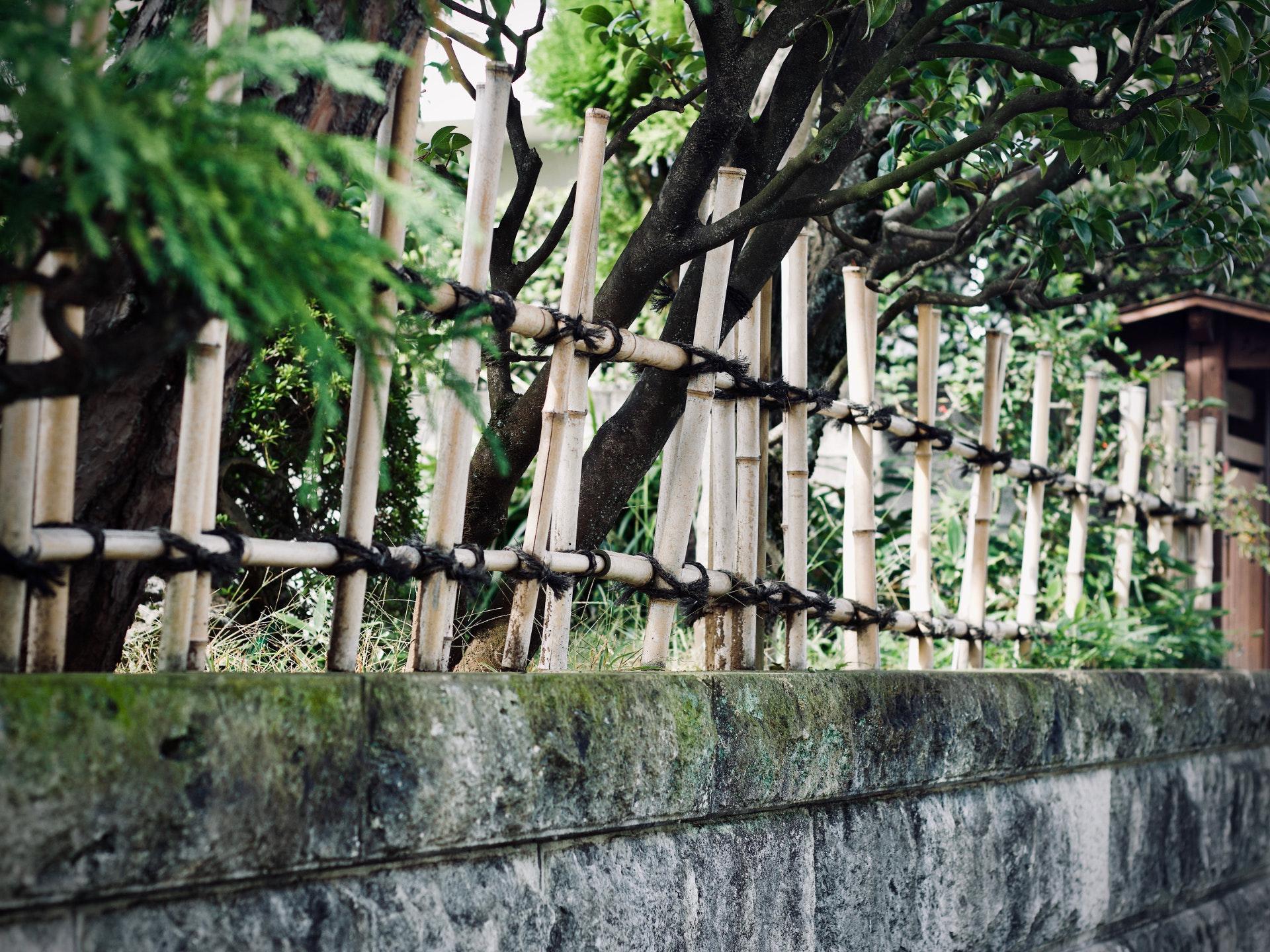 Nicht nur aus Bambus können wir wunderschöne Naturzäune bauen. - Photocredit: unsplash.com/Jelleke Vanooteghem